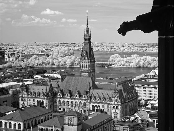 Rathaus und Alster (IR)