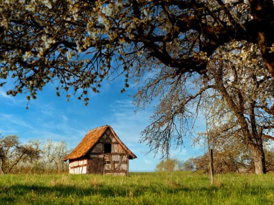 Kirschhütte